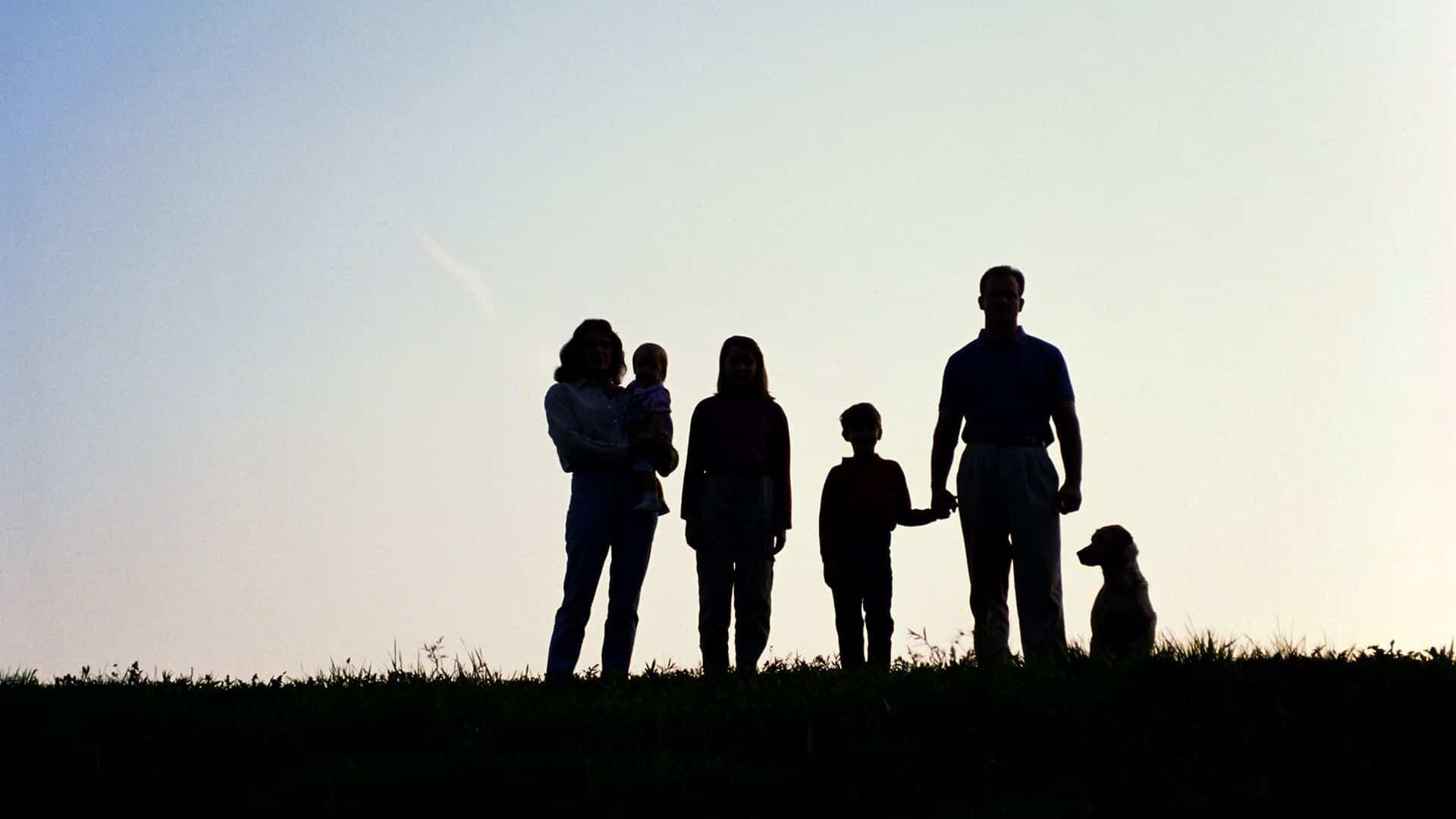 AEGON - Los plazos para reclamar un seguro de vida