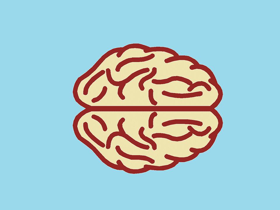 Aegon Salud mayo que-es-epilepsia-sintomas
