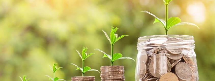 Monedas apiladas bajo una planta
