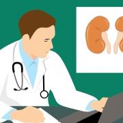 enfermedades renales