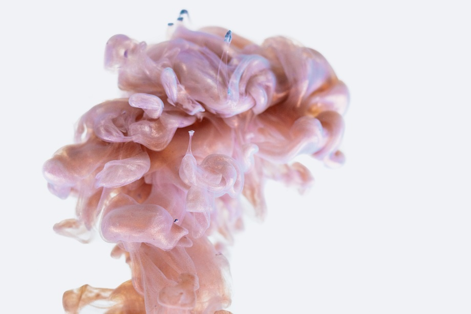 que es la microbiota intestinal
