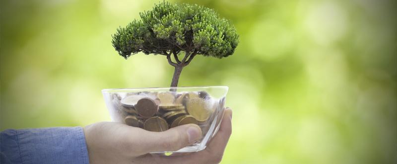 rescatar de un plan de pensiones