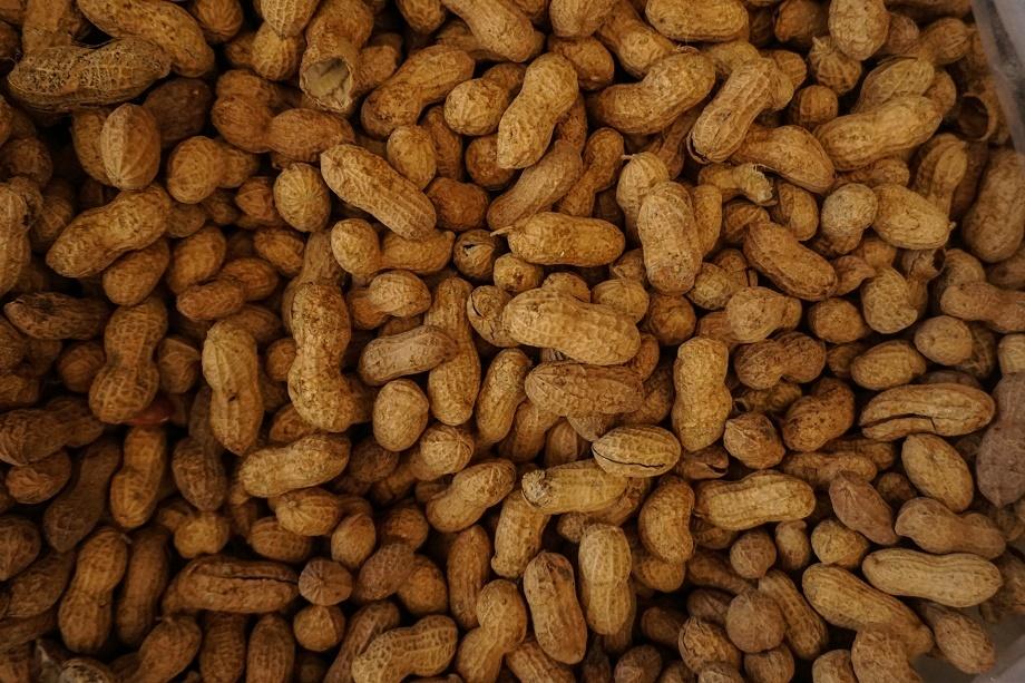 los cacahuetes suelen dar lugar a alergias alimentarias
