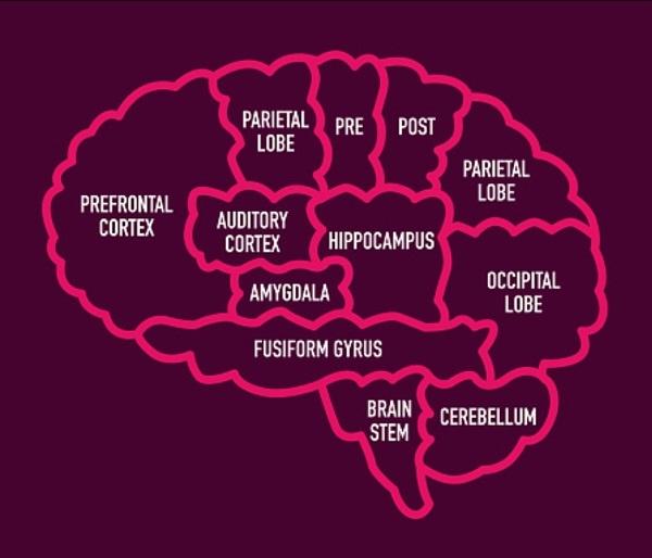 que pasa en el cerebro cuando hay depresion