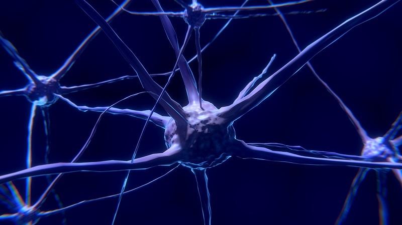 que pasa en el cerebro de una persona con depresion