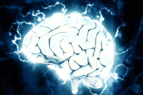 El cerebro en el trastorno obsesivo-compulsivo presenta modificaciones