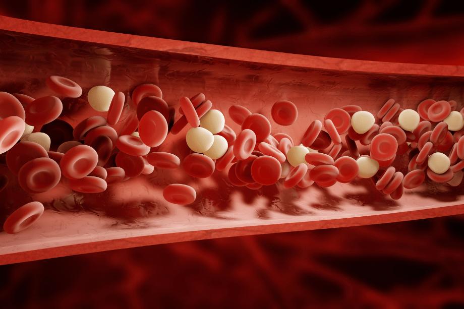 El síndrome antifosfolípido favorece las trombosis