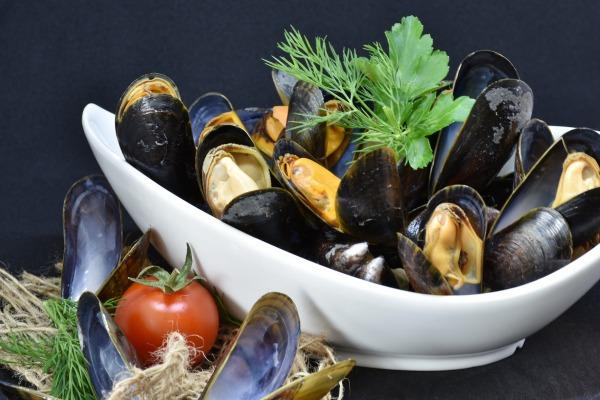 Los moluscos son importantes en una dieta saludables como es la atlántica