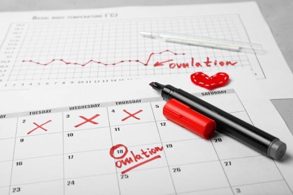 Calcular el día de ovulacion puede ser complicado