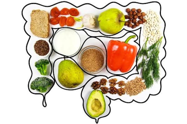 La salud del intestino depende de lo que comemos