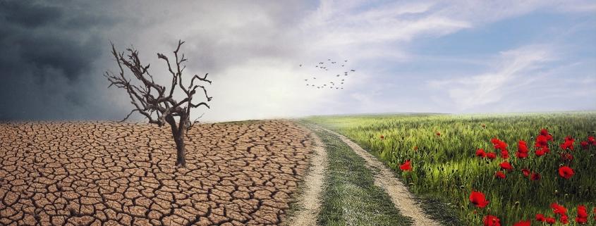 ley del cambio climático