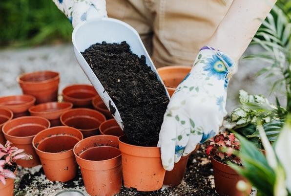 Plantar en maceta es cada vez más frecuente