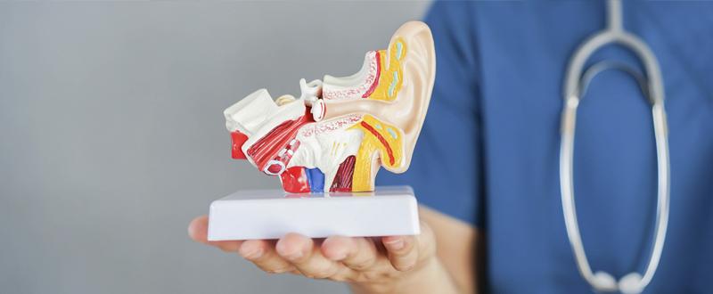 causas y síntomas de la sordera